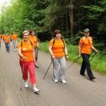 Odnowienie oznakowania tras w Puszczy Białowieskiej